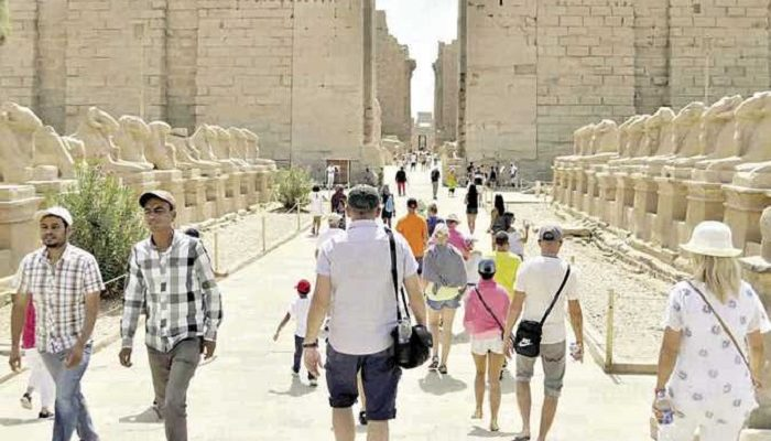 The tourists come back