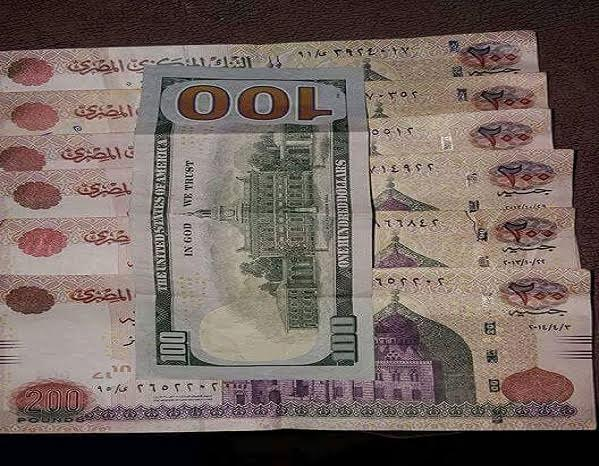 The Last Two Weeks In July Saw Egyptians Stunned At Havoc Money Markets Owing To Unprecedented Swings Egyptian Pound Us Dollar Exchange