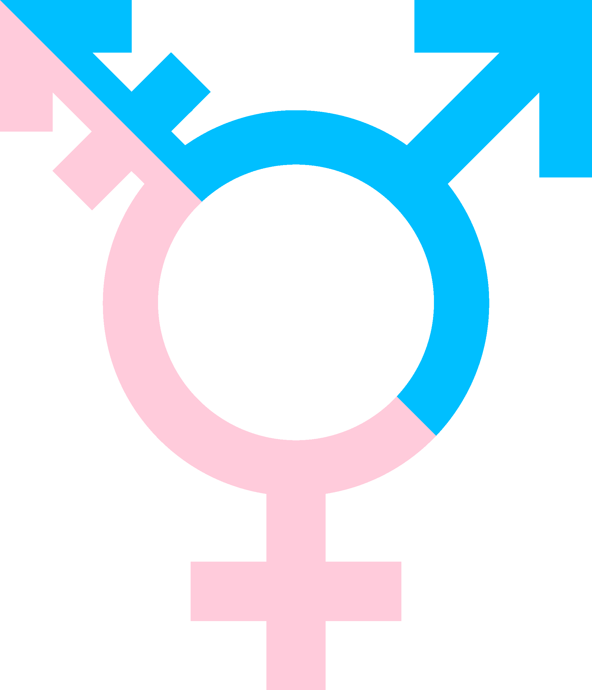 """Transgender persons in Egypt say they face a """"Society with no mercy"""""""